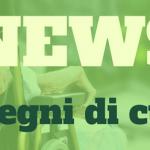 Lombardia, deliberato programma operativo regionale a favore di persone con gravissima disabilità