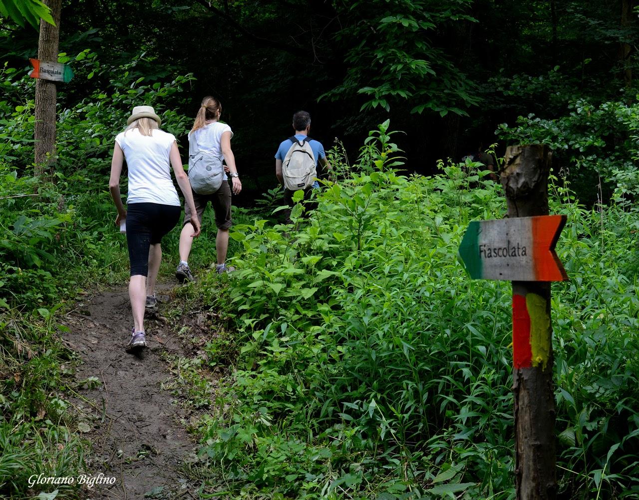 La Fiascolata di Dego: enogastronomia, ecologia ed escursionismo per AISLA